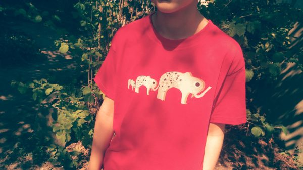 photo t shirt famille elephants enfant moyen plan